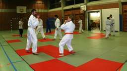 Training der Ju-Jutsu-Sportler