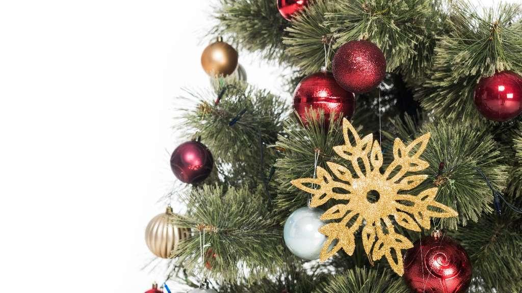 Grüne Gurke Im Weihnachtsbaum.Warum Der Anblick Eines Geschmückten Nadelbaums Entzückt München